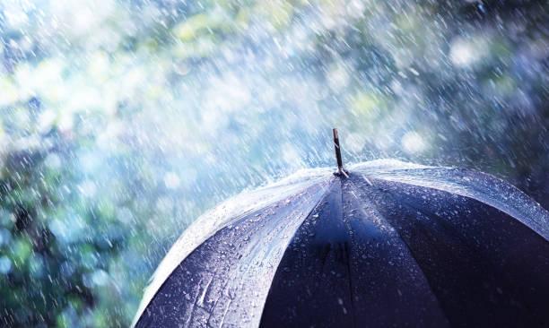 Regen und Wind auf schwarzem Regenschirm - Wetterkonzept – Foto