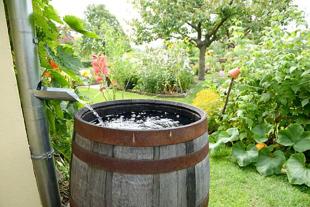 Regen barrel – Foto