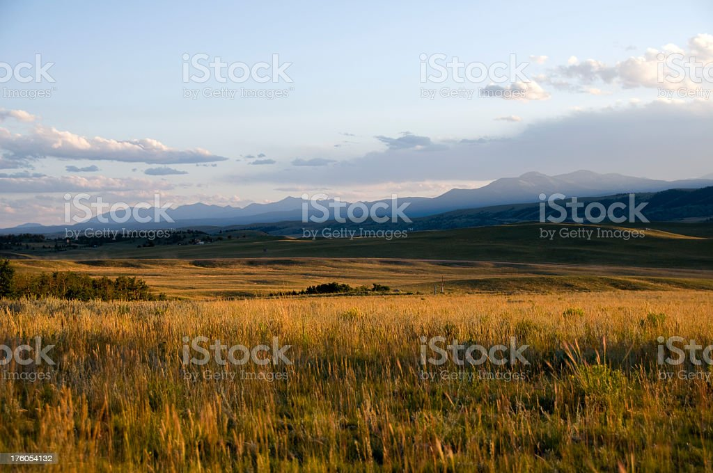 Rain clouds on mountain in background of a golden meadow royalty-free stock photo