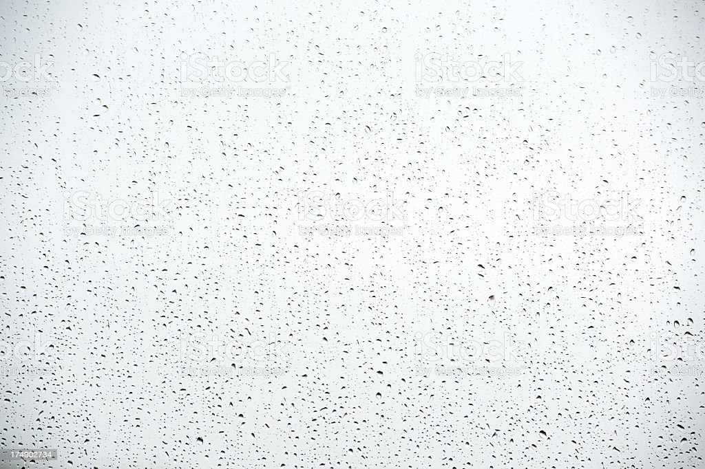 rain drop stock photo