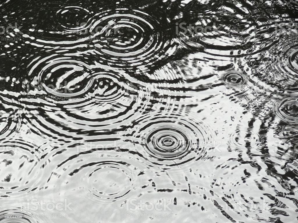 Rain drop ripples on water. stock photo