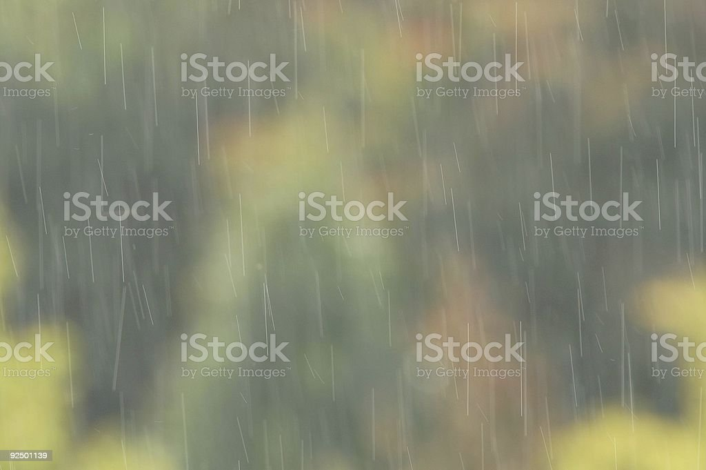 Rain droplets royalty-free stock photo