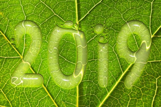 2019, fällt regen auf einem grünen blatt hintergrund, 2019 neujahr umweltkonzept - zukunftswünsche stock-fotos und bilder