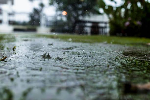 Regen-Tropfen auf dem Rasen – Foto