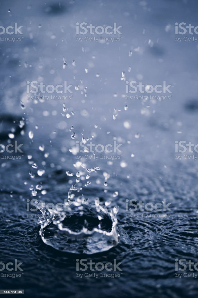 Rain drops on the surface of water. stock photo