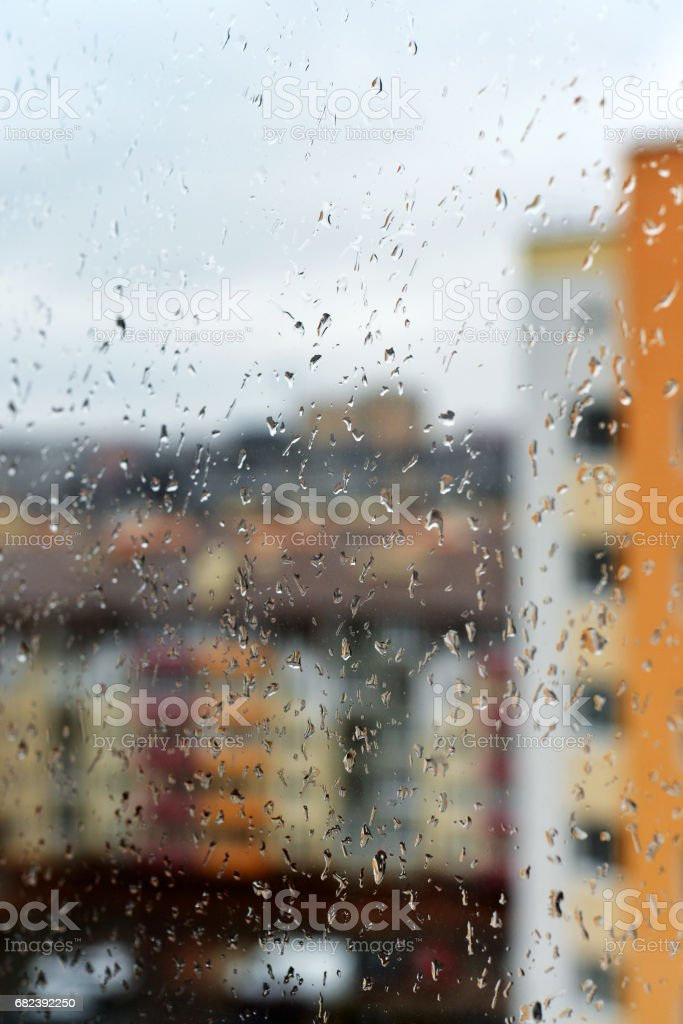 Rain drops on the window royalty-free stock photo