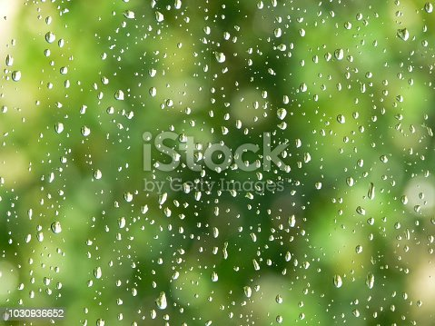 rain drops on water with green trees in background
