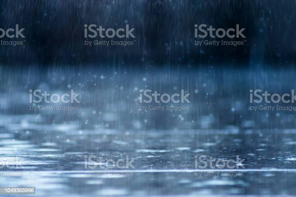Photo of Rain fall on the ground