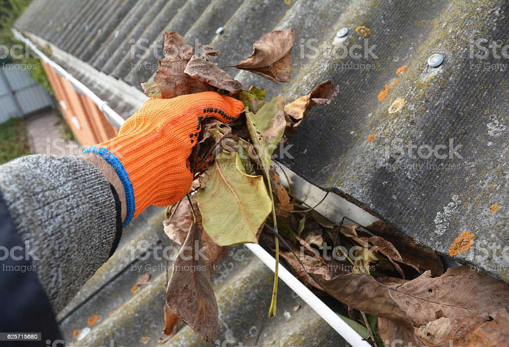 Image result for Gutter Cleaning Company istock