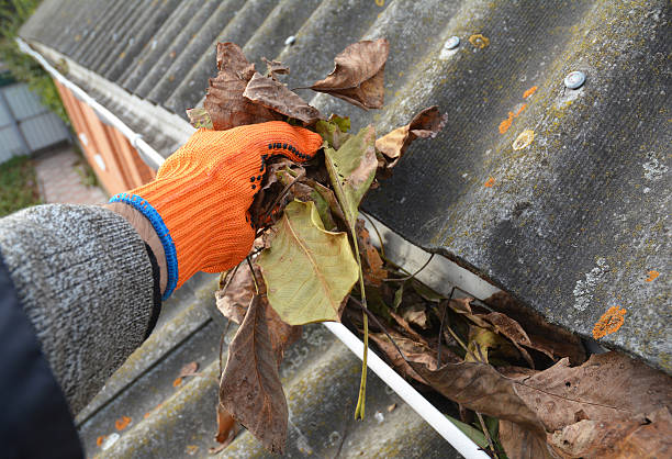 Rain Gutter Cleaning from Leaves in Autumn foto