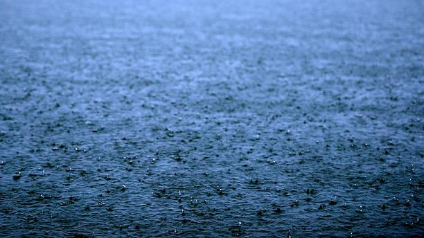 Regen See Lake – Foto