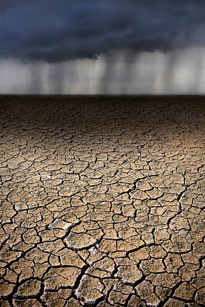 Rain on Parched, Cracked Ground Dried up lake bed with parched and cracked earth. Behind, a large raincloud has burst and sheets of rain fall onto the arid ground. lake bed stock pictures, royalty-free photos & images