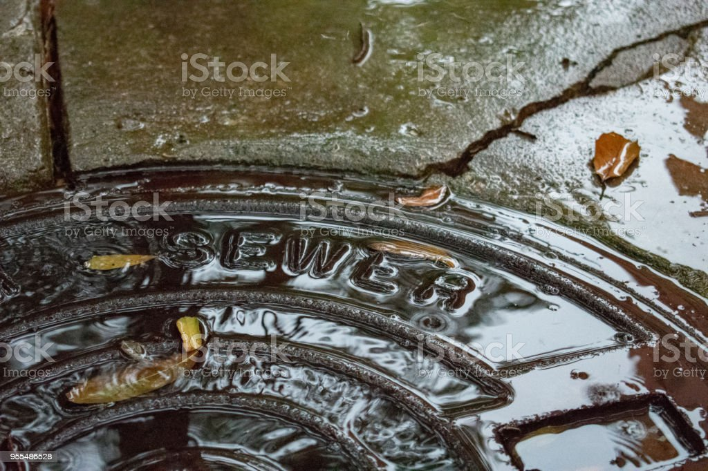 rain on sewer cover with concrete stock photo