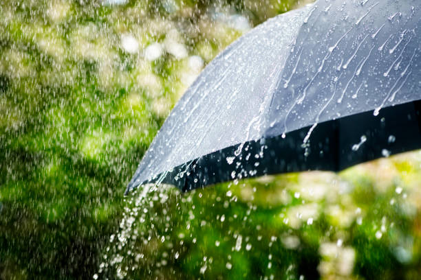 Rain on umbrella concept for bad weather, winter or protection stock photo