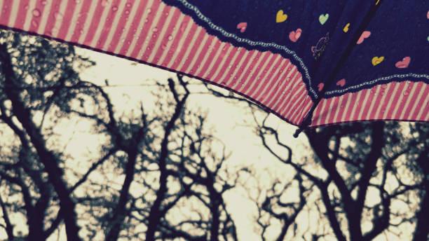 Chuva com guarda-chuva - foto de acervo