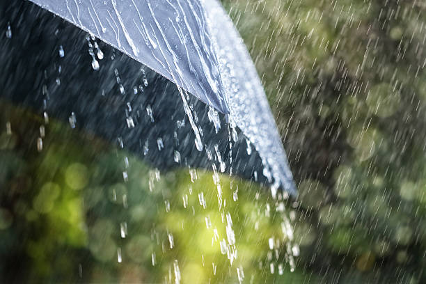 rain on umbrella - fall prevention stock photos and pictures