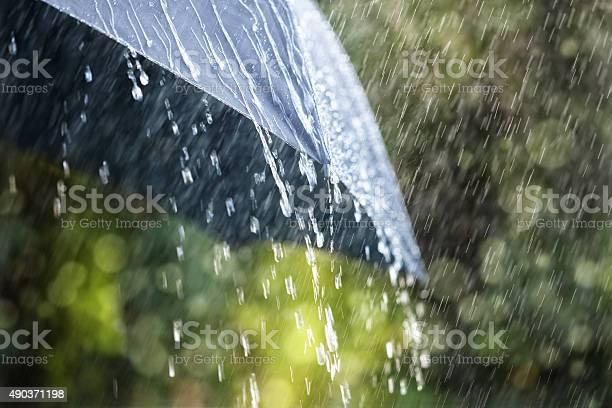 Rain On Umbrella Stock Photo - Download Image Now