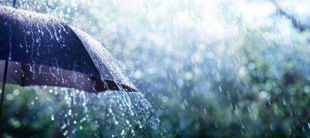 deszcz na parasolu - koncepcja pogody - deszcz zdjęcia i obrazy z banku zdjęć