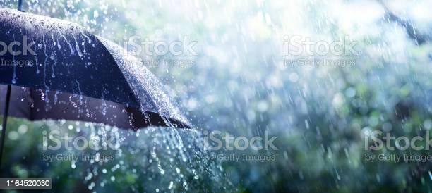 Photo of Rain On Umbrella - Weather Concept