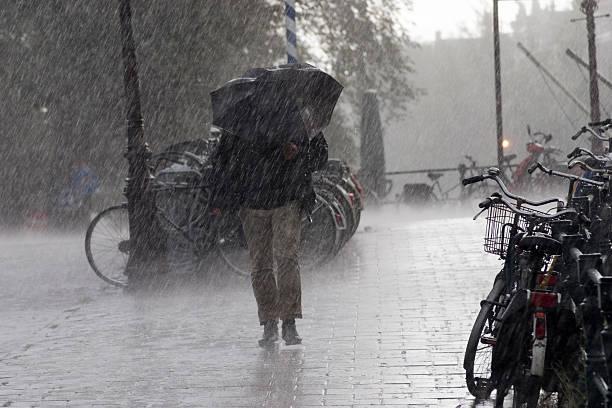 deszcz - deszcz zdjęcia i obrazy z banku zdjęć
