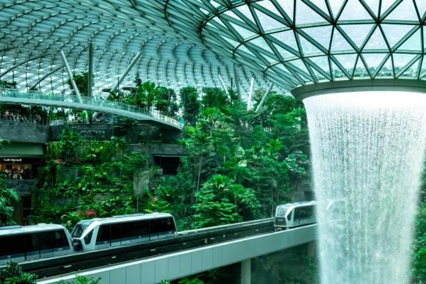 hsbc rain vortex, der höchste indoor-wasserfall der welt am flughafen jewel changi. grüner wald im einkaufszentrum und skytrain. ikonische sehenswürdigkeiten am flughafen singapur changi - stockwerke des waldes stock-fotos und bilder