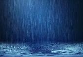 雨水に落ちるフロア長の雨季
