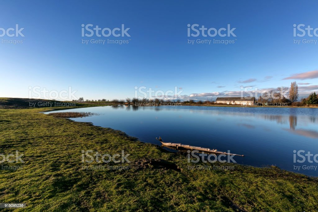 rain water forms a lake in a park stock photo