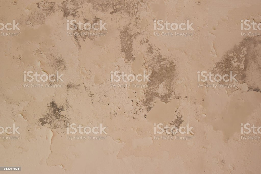 Rain water leaks on the ceiling causing cement damage, peeling paint and moldy. stock photo