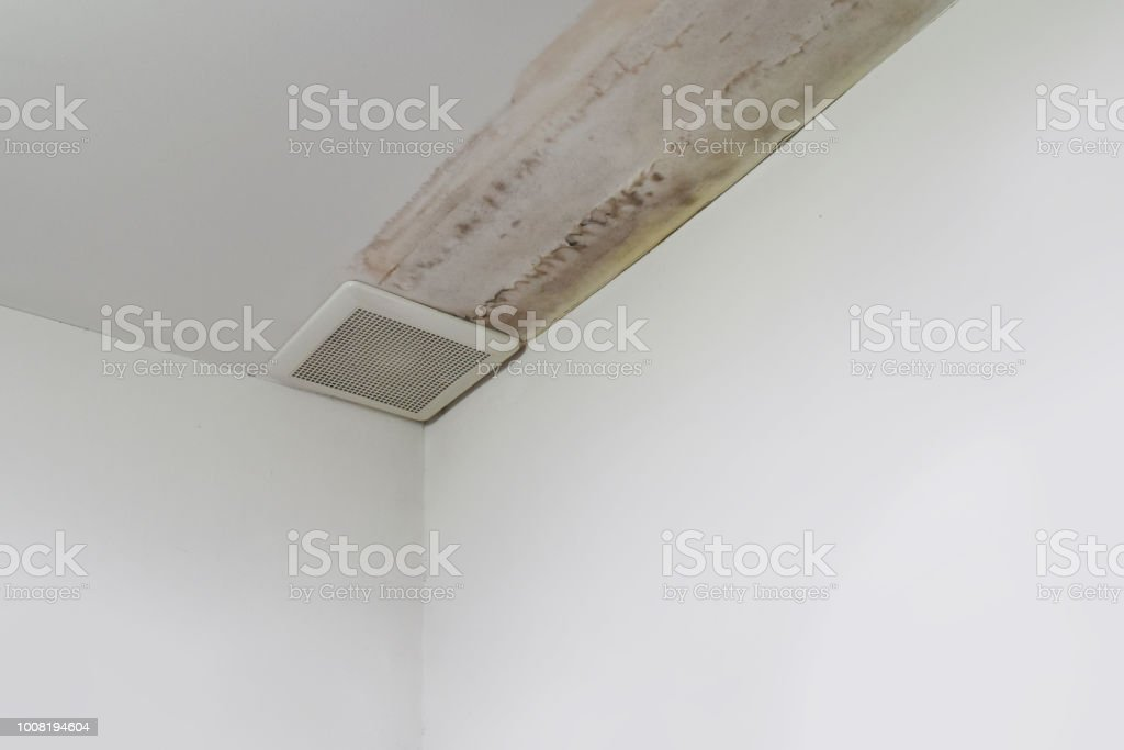 Bat Leaks When It Rains on rain lamp, rain water, rain fail, rain flood, rain pipe, rain tank, rain roof, rain pour, rain ball, rain cistern, rain damage,