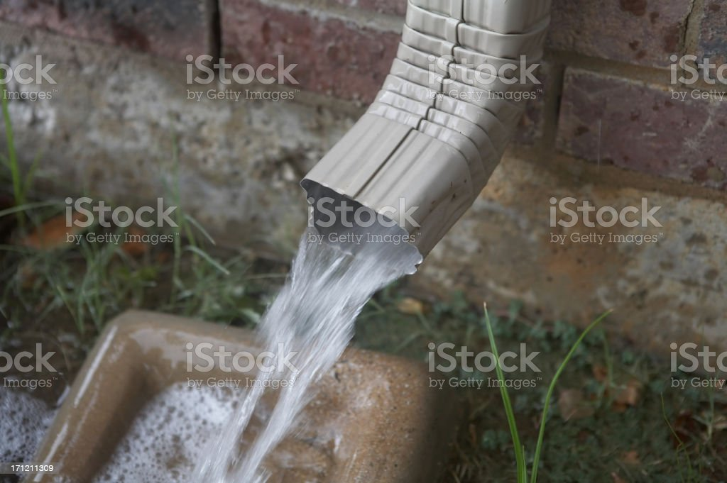 Rain water royalty-free stock photo