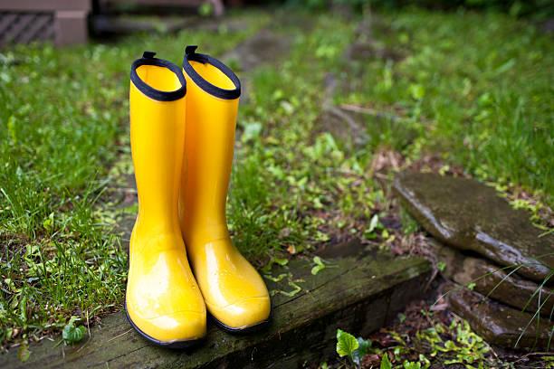 Rainboots stock photo