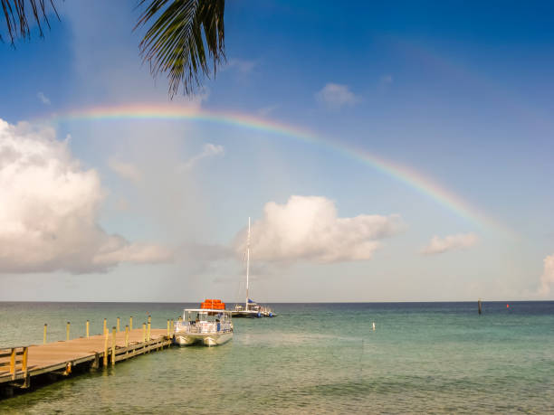 Rainbow above smooth ocean with boats tied to wooden pier - double rainbow - ideallic summer holiday with palm framing top of shot stock photo