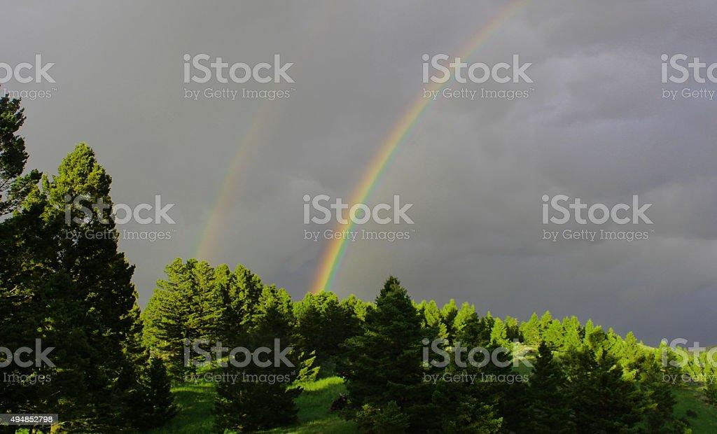 Rainbow - Afternoon Shower stock photo