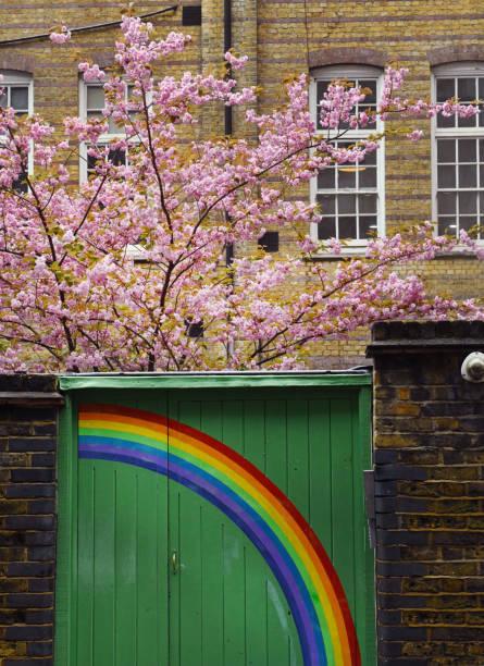 Regenbogen und Blüte – Foto