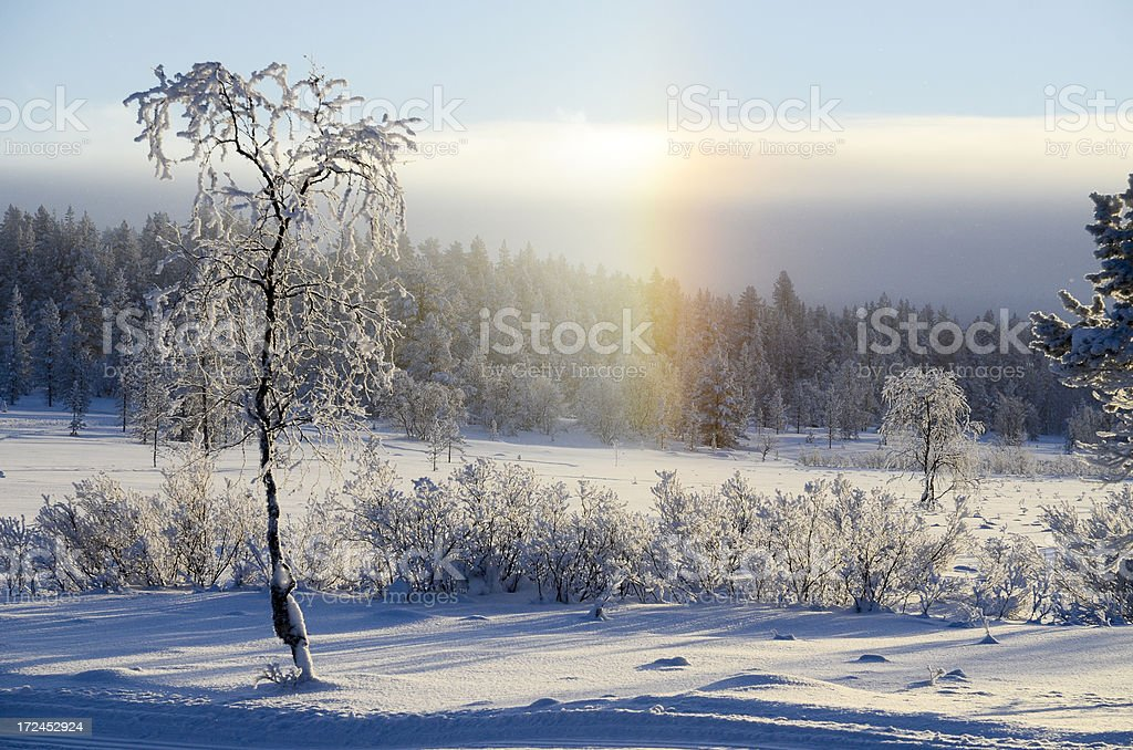Rainbow and snow royalty-free stock photo