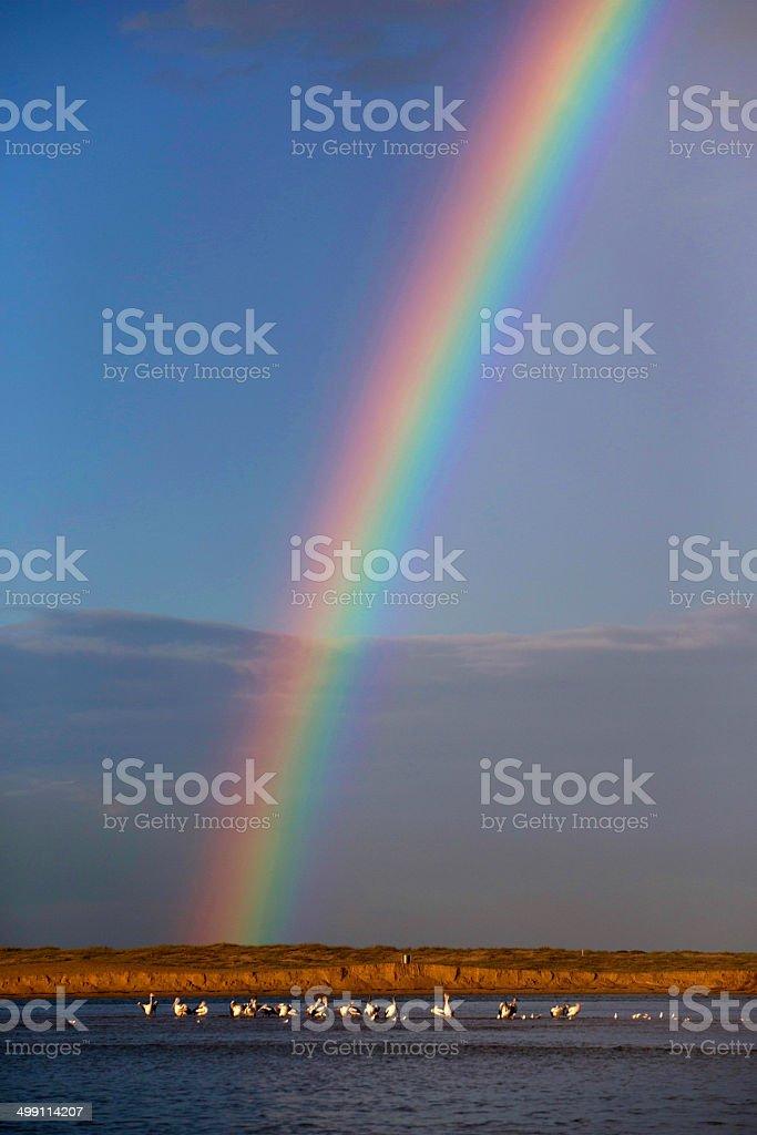 Rainbow at The Entrance, NSW, Australia stock photo