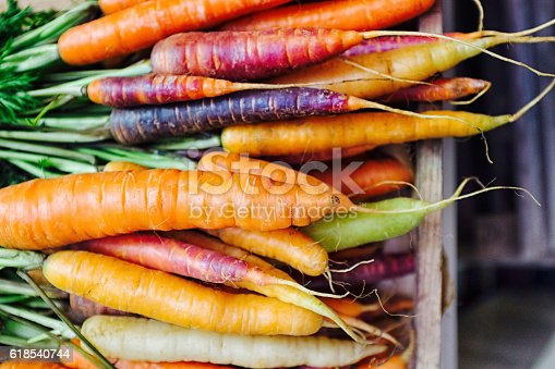 Fresh picked rainbow carrots including different coloured carrots. Colourful carrot varieties that are fashionable now.