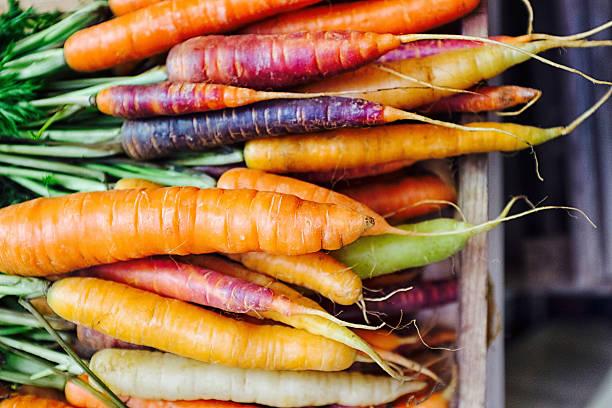 rainbow carrots / fresh carrots / carrot varieties - cenoura imagens e fotografias de stock