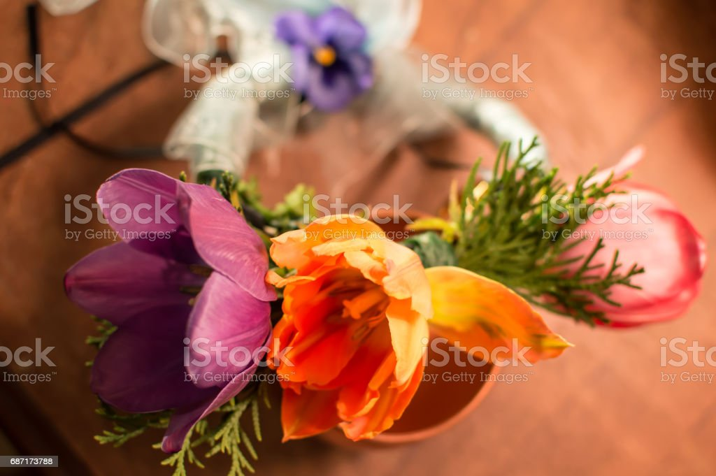 Rainbow Colored Flower Garland Wedding Crown Conceptual Love Themes Photography Stock Photo Download Image Now Istock