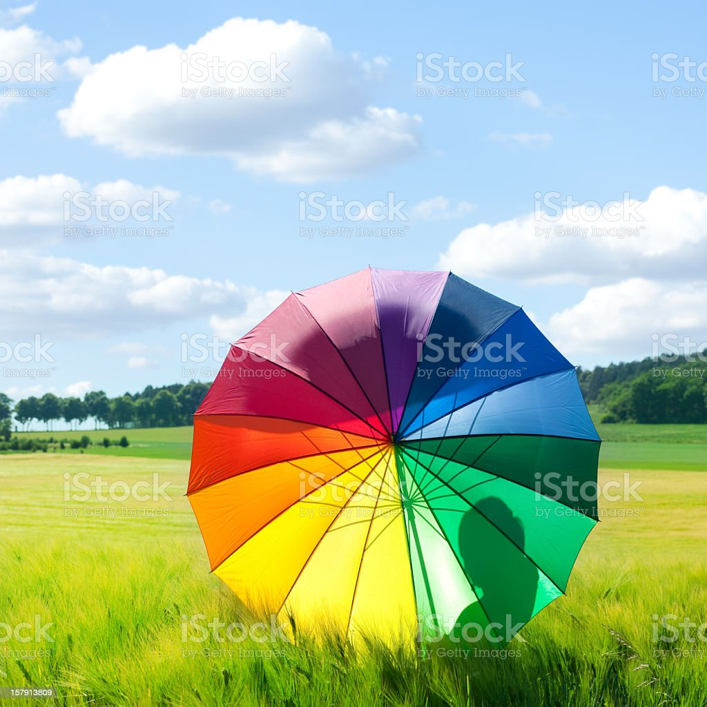 Rainbow colored umbrella in field on a sunny day royalty-free stock photo