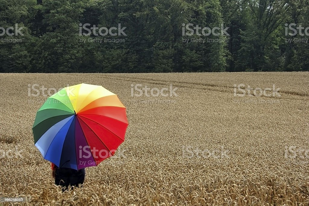 Rainbow colors in a field royalty-free stock photo