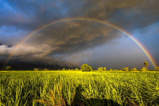 Rainbow in Rain Storm