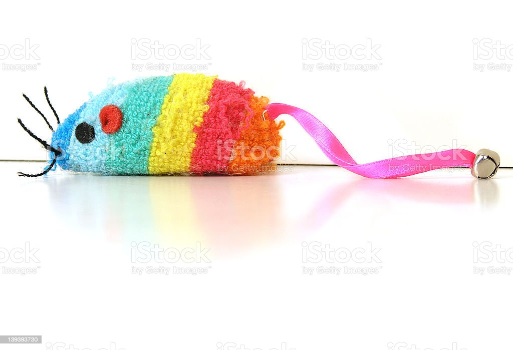 rainbow mouse stock photo