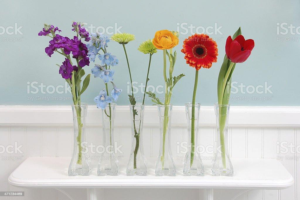 Rainbow of Flowers stock photo