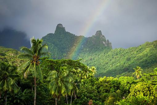 istock Rainbow on Moorea island jungle and mountains landscape 657468988