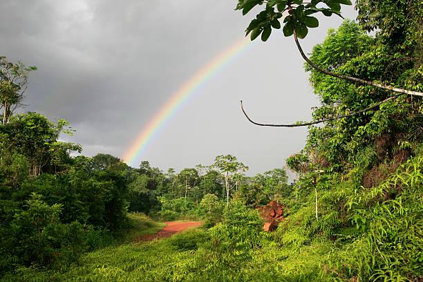 Regenbogen auf den Regenwald umgeben Cacao, Französisch-Guayana – Foto