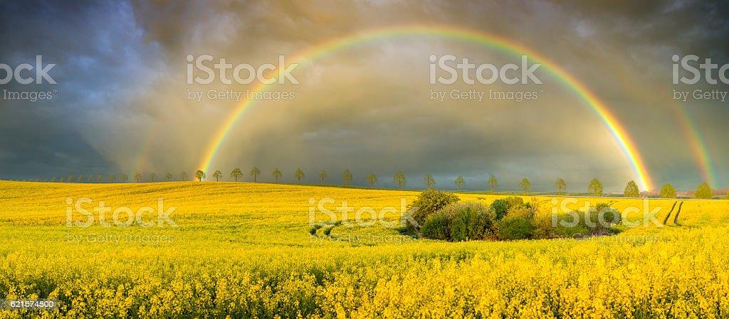 Arc-en-ciel sur le terrain après l'orage en soirée photo libre de droits