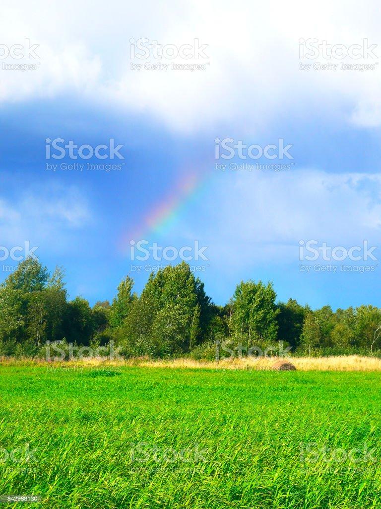 Rainbow over green grass. Sun and blue ski. Sunshine after rain. stock photo