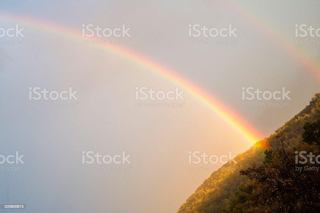 Rainbow over trees stock photo