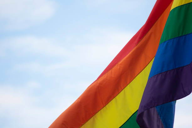 rainbow pride flags - dept stock pictures, royalty-free photos & images